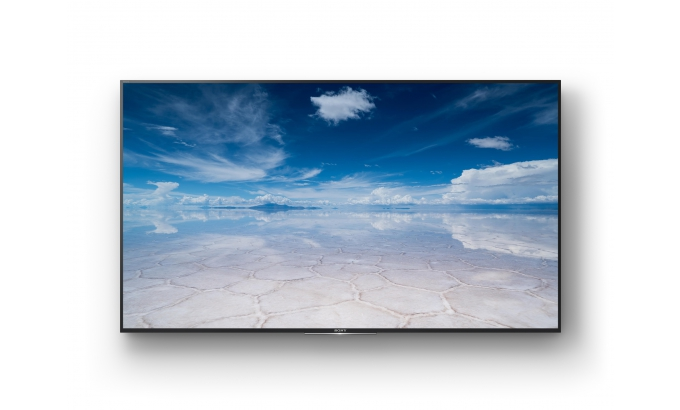 Sony Bravia Professional 4K Displays